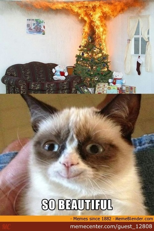 Grumpy Cat Likes Burning Christmas Tree by guest_12808 ...