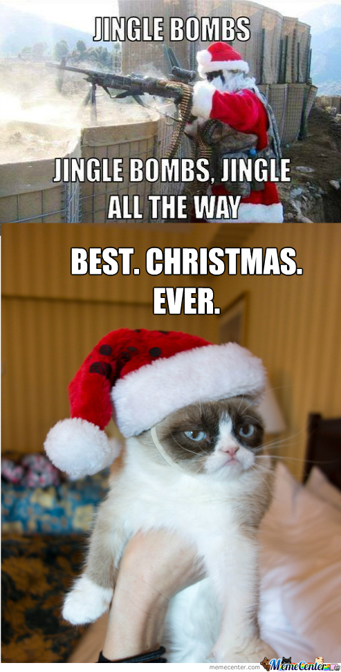 Grumpy Cat Likes Christmas By Astarius Meme Center