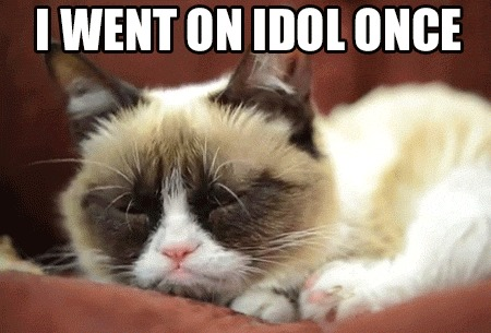 grumpy cat on the idol_gp_3133901 grumpy cat memes best collection of funny grumpy cat pictures,Funny Clean Grumpy Cat Memes