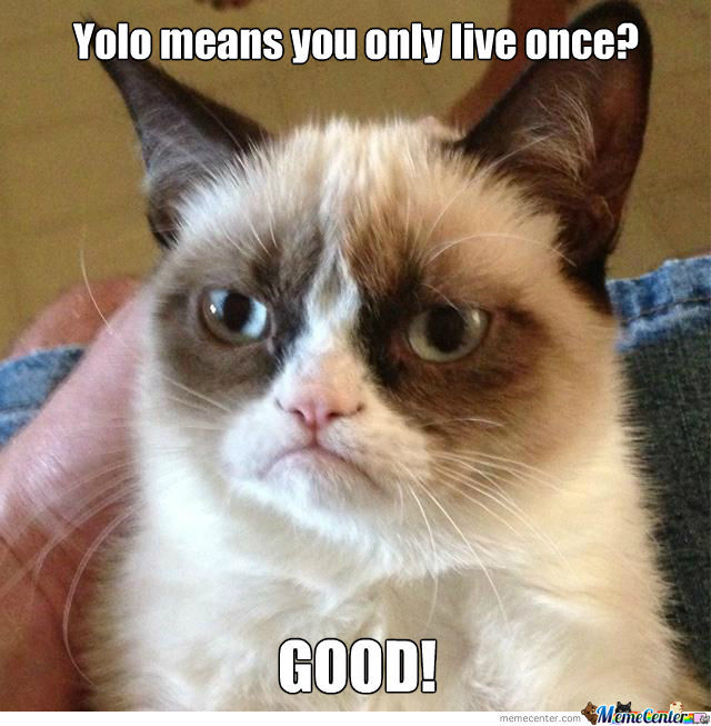 Grumpy Cat Only Lives Once.
