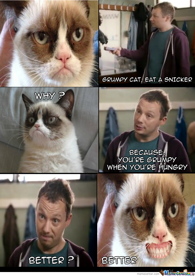 Grumpy Cat Snicker Advert By Recyclebin Meme Center
