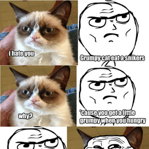 Grumpy Cat Snickers By Dual Welder 39 Meme Center