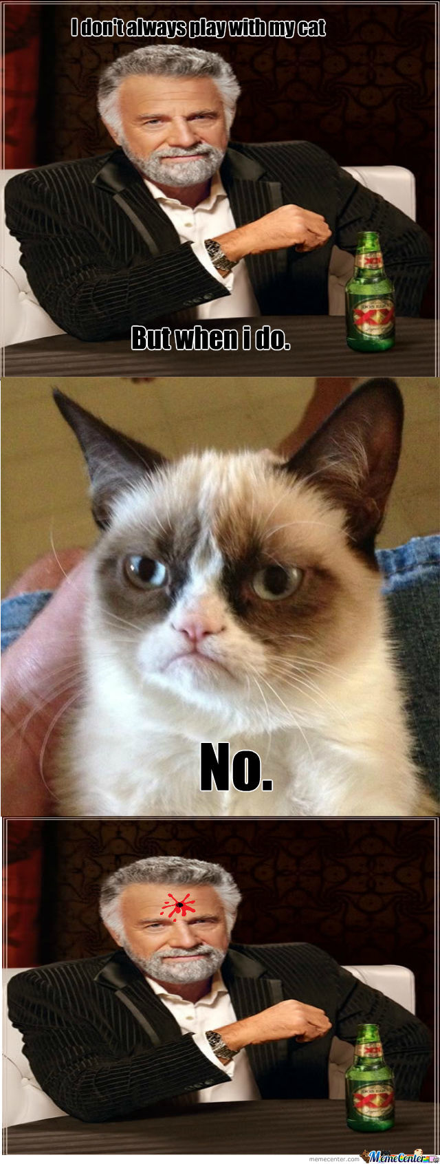 Grumpy Cat Strikes Again !