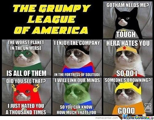 Grumpy Cat Superhero Version