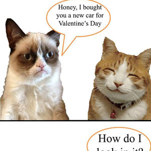 Grumpy Cat Valentine S Gift By Bibo1334 Meme Center