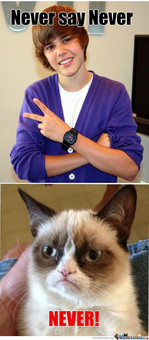 Grumpy Cat Vs Justin Bieber
