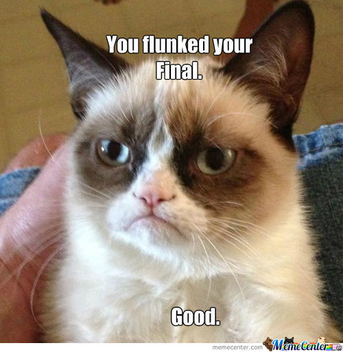 Grumpy Cat Why You So Mean