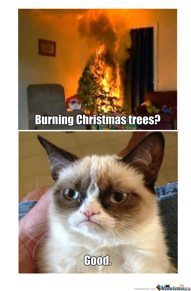 Grumpy Cat's Christmas by meaghanw519   Meme Center