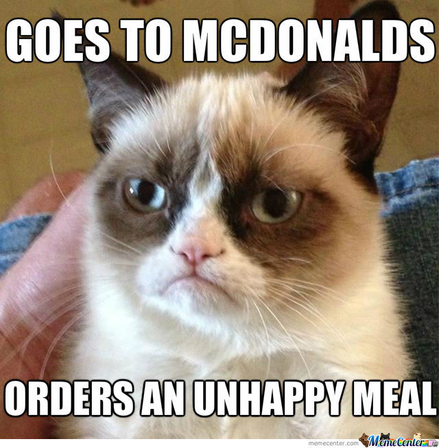 Grumpy Cats Usual Day