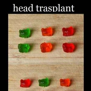 gummy bear surgery transplant_fb_907893 gummy bear surgery transplant by bhusandai meme center