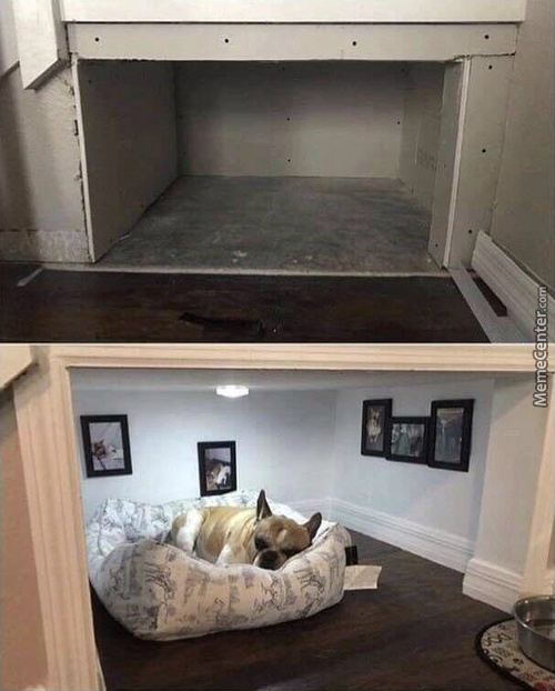 Guy Builds His Best Friend His Own Little Room