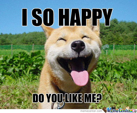 happy dog is happy_o_243584 happy dog is happy ] by recyclebin meme center