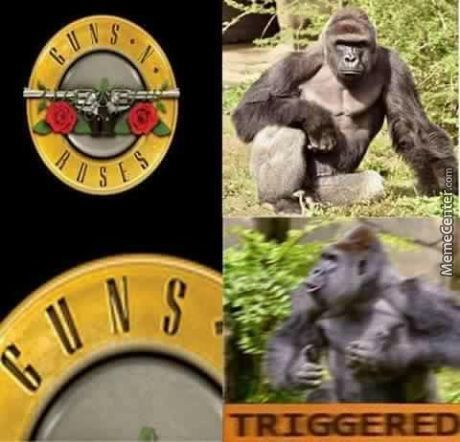 Harambe Is Triggered