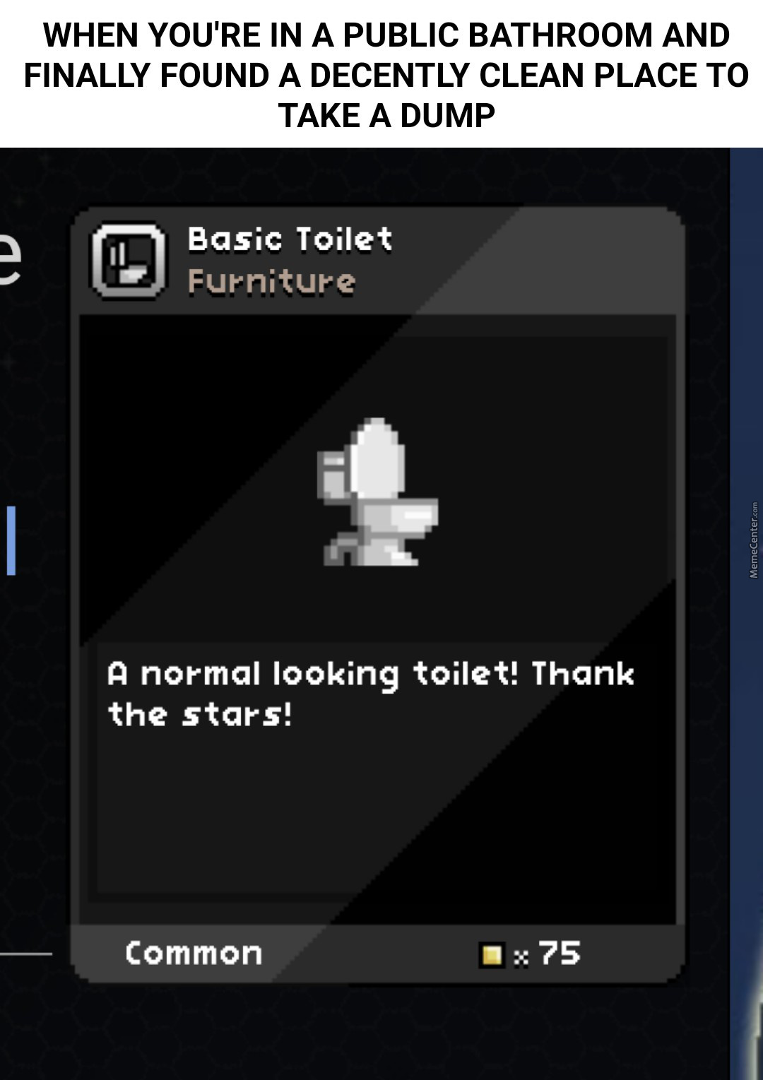 Hard To Find A Normal Toilet In Starbound