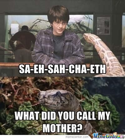 Harry Potter Trying To Speak To Snake..