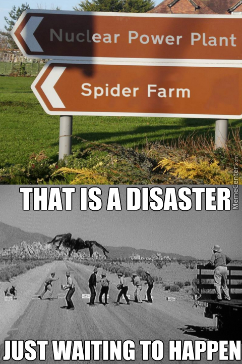 Haven't These People Seen Tarantula? That 50S Movie Was Made To Warn Us Of The Danger That Is Giant Spiders