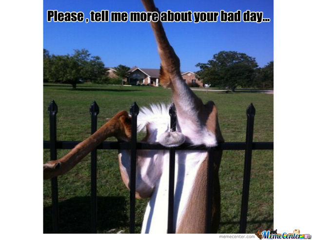 Funny Memes For Having A Bad Day : Having a bad day by badassmeme meme center