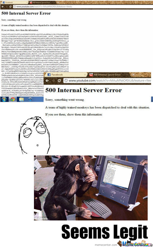 Highly Trained Monkeys