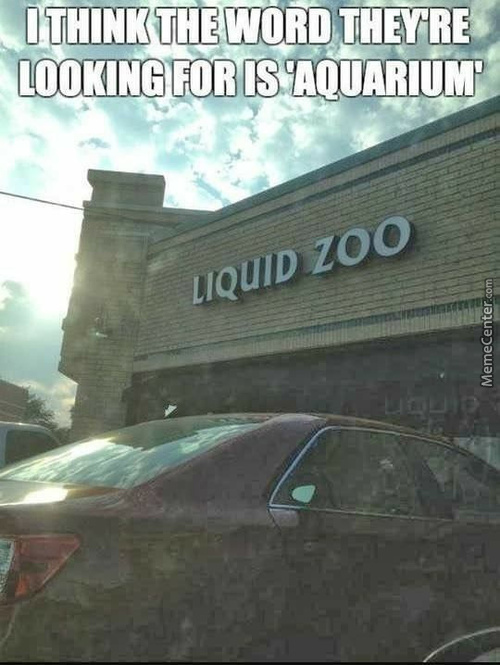 Hipster Zoo