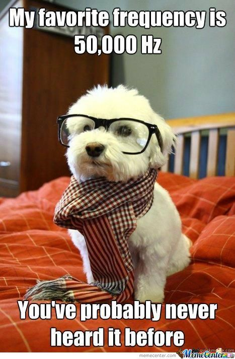 Hipsters, Hipsters Everywhere