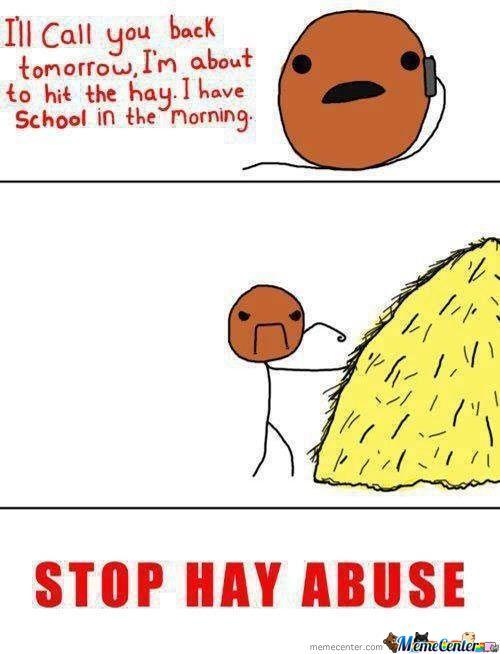 Hit The Hay