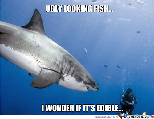 Ugly Looking Fish