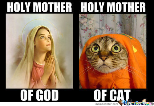 holy mothers_c_1665967 meme center piodenstore likes page 41