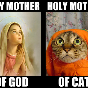 holy mothers_fb_1665967 happy father's day by gafcomics meme center