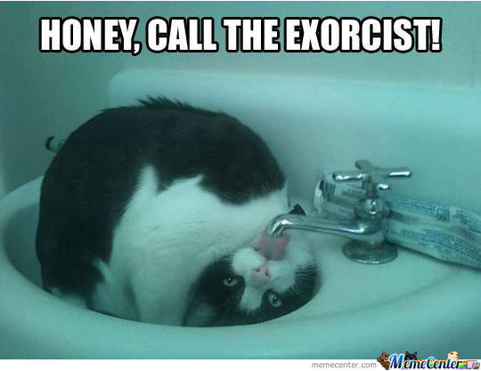 Honey, Call The Exorcist!