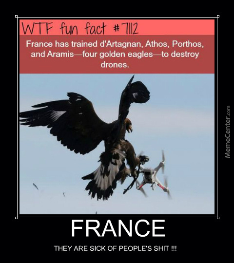How France Deals With Drones.
