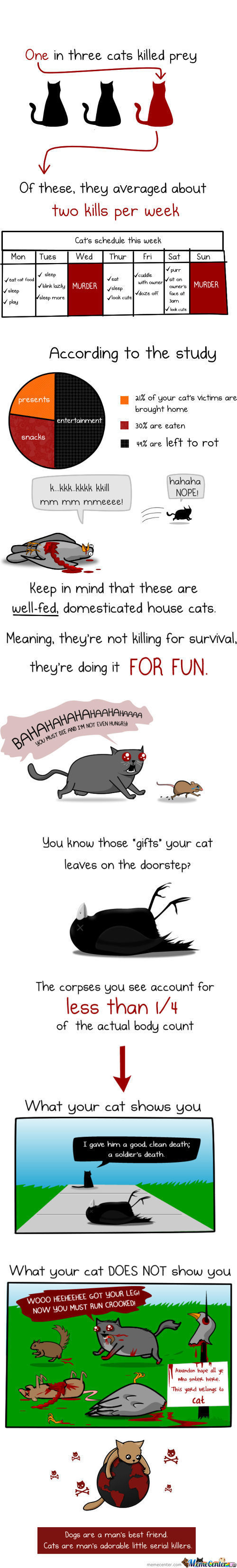 How Much Does A Cat Kill? (The Oatmeal)