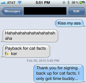 how to get someone to stop texting cat facts by landeh meme center
