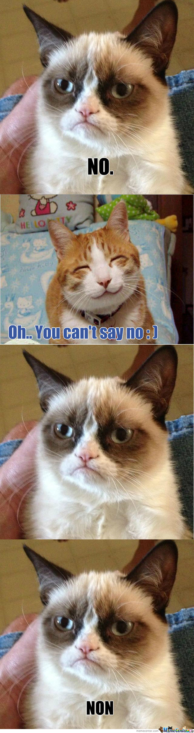 """How To Make Grumpy Cat Stop Saying """"no"""" by tilaoutipala ..."""