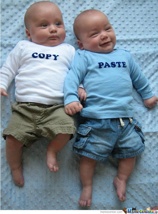 How Twins Are Really Made