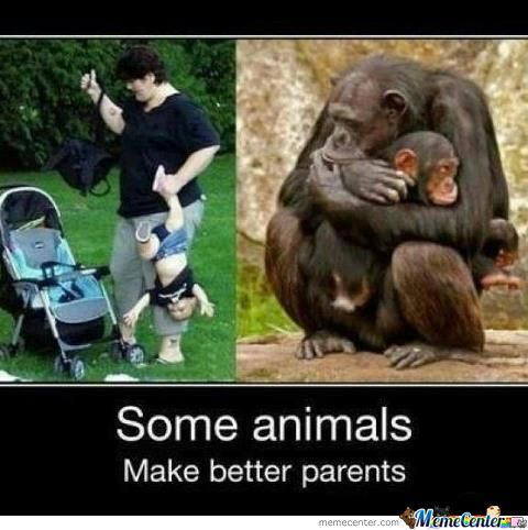 Human And Animal Parents.
