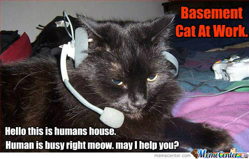 Human Is Busy Right Meow