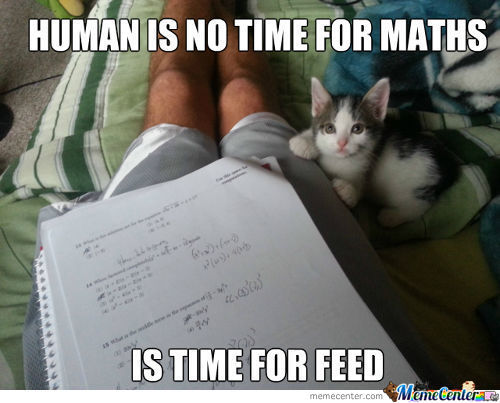 Human Is No Time