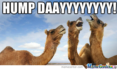 hump day_o_2249113 hump day by yellowbelly69 meme center