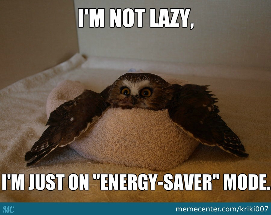 "I'm Not Lazy, I'm Just On ""energy-Saver"" Mode"
