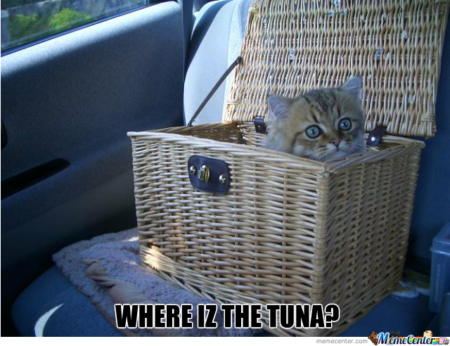 I Can't Find In The Basket