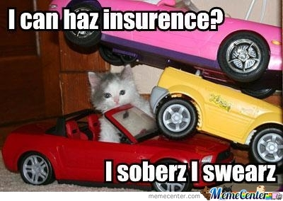 I Can Haz Insurence?