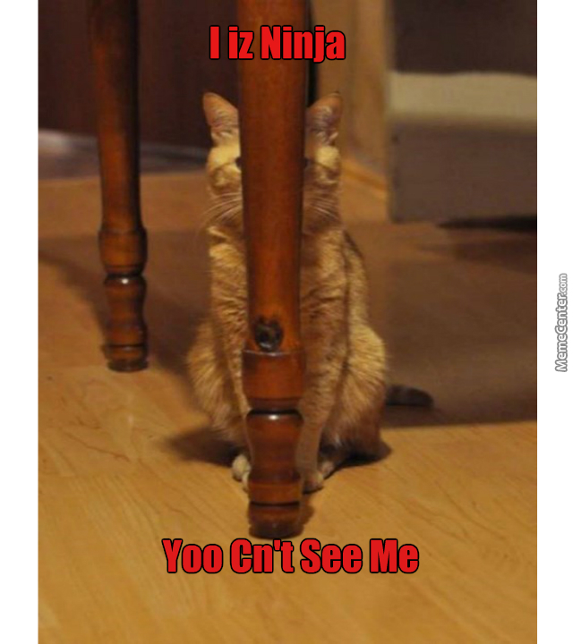 I Can See You But You Cant See Me