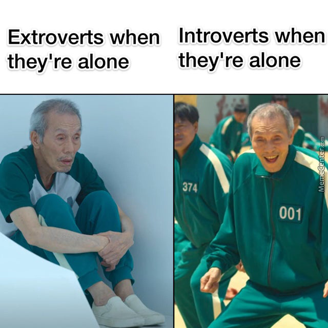 I Chose The Introvert Life