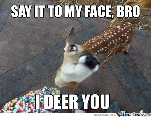 Funny Reindeer Meme : Deer memes. best collection of funny deer pictures