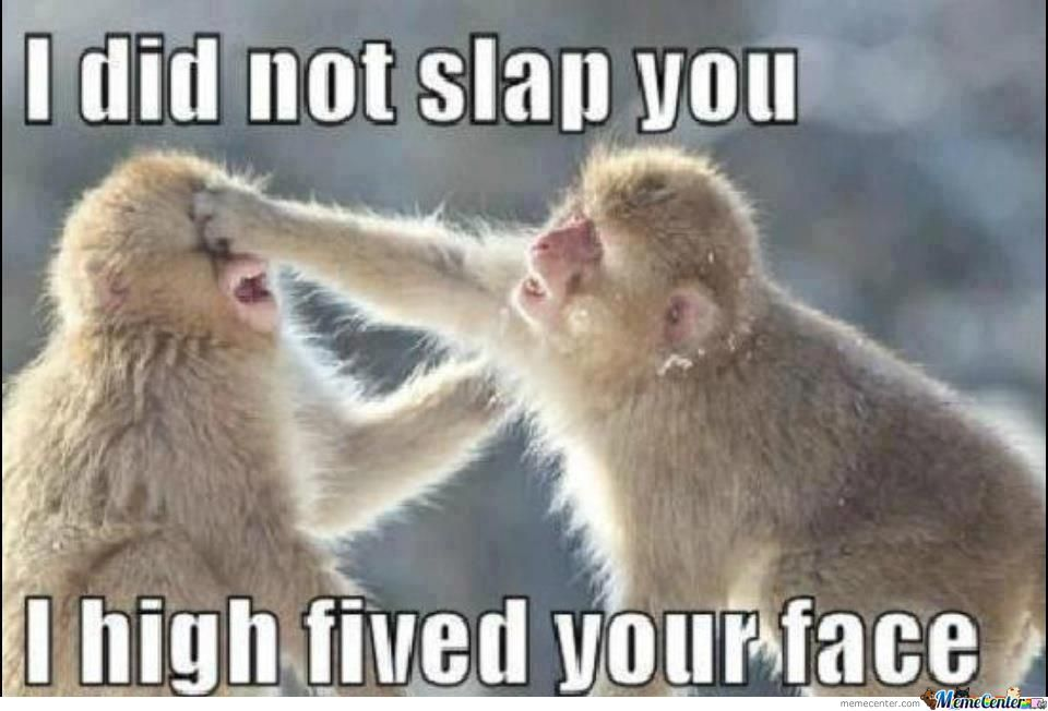 I Did Not Slap You I Just High Fived Your Face