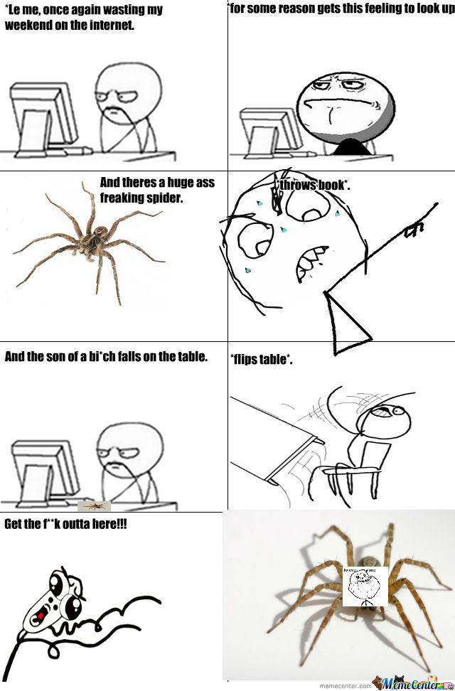 I F**king Hate Large Spiders