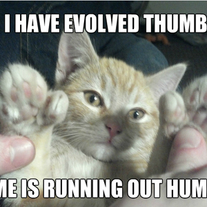 i for one welcome our new feline overlords_fb_1800639 i for one, welcome our new feline overlords by agent_zero meme,I For One Welcome Meme