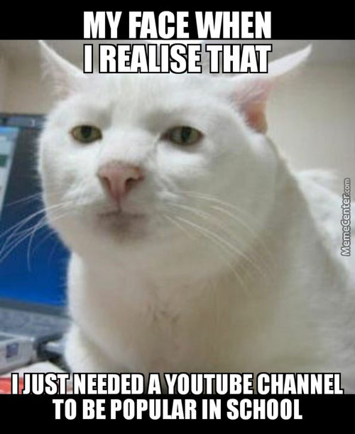 I Guess That Everybody Wants To Have A Famous Youtube Channel.
