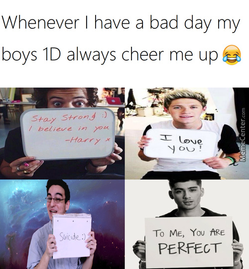 I Had To Go Through Eight Different 1D Fanpages For This Meme