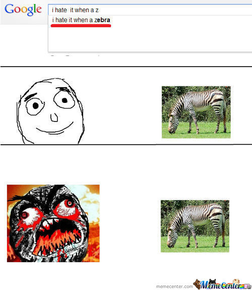 I Hate It When A Zebra